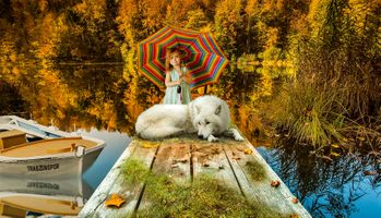Бесплатные фото белый волк,девочка,пристань,мостик,лодки,осень,водоём