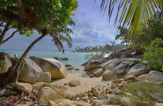 Бесплатные фото Остров Бангка,Индонезия,Bangka Island,Indonesia,море,берег,камни,пляж,пальмы,деревья берег,пейзаж