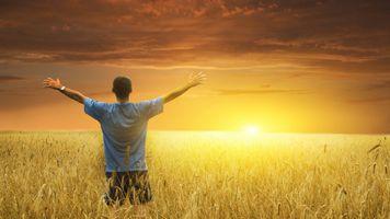 Фото бесплатно поля, трава, пейзажи