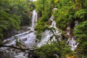 Фото бесплатно водопад, джунгли, ручьи