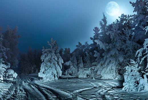 Фото бесплатно зима, луна, лес