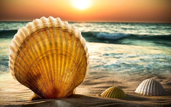 Фото бесплатно пляж, боке, горизонт