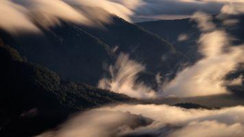 Фото бесплатно туман, горы, кустарники