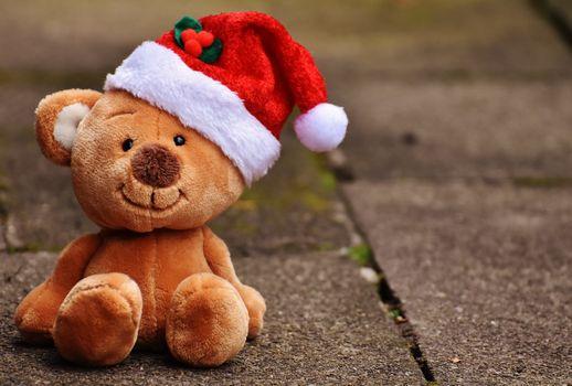 Бесплатные фото рождество,игрушка,плюшевый медведь,шляпа санта,текстильный,веселая,тедди,игрушка мягкая,плюшевая игрушка