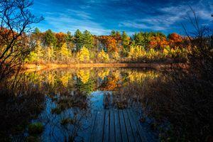 Photo free autumn colours, autumn, landscape