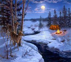 Бесплатные фото ночь в лесу,зима,речка,снег,олени,костёр,палатка