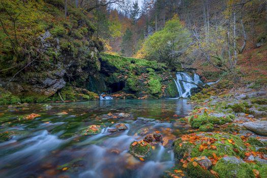 Фото бесплатно река, мох, осень
