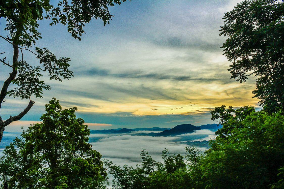 Фото бесплатно туман, утро, Окружающая среда, природа, путешествовать, Таиланд, Красоту, гора, небо, облако, лес, Восход, пейзаж, солнце, дерево, пейзажи