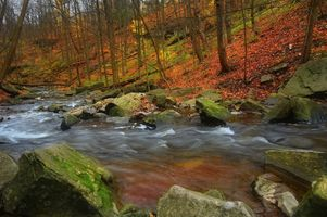 Фото бесплатно осень, река, камни