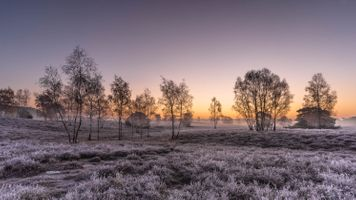 Photo free frost, field, landscape