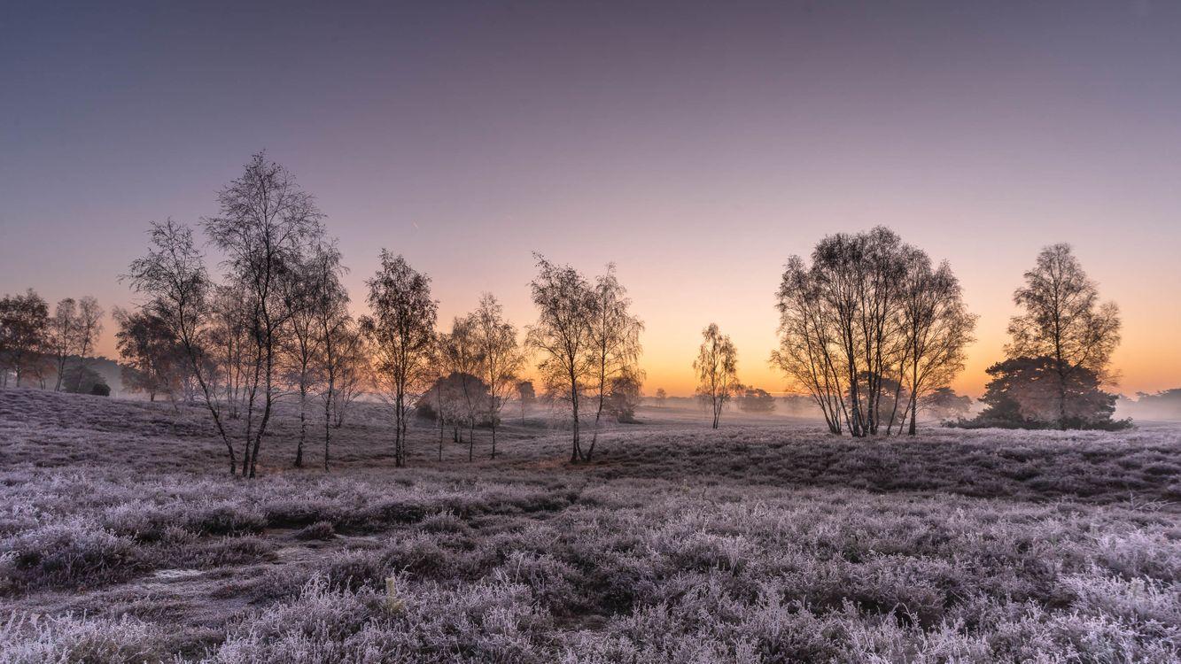 Фото бесплатно мороз, поле, пейзаж - на рабочий стол