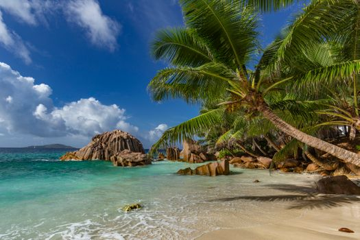 Фото бесплатно Сейшельские острова, побережье, природа