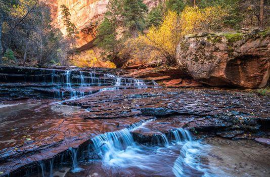 Photo free Zion National Park, landscape, autumn