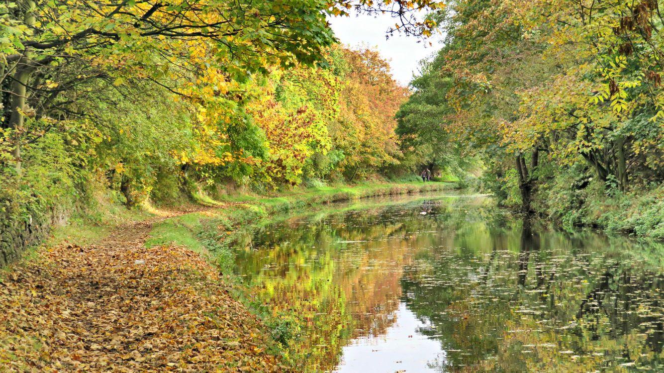 Фото бесплатно осень, лес, деревья, река, природа, пейзаж, парк, канал, пейзажи