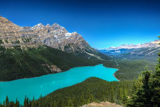 Photo free trees, Alberta, a beautiful lake