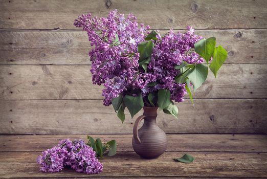 Photo free flowers, still life, lilac