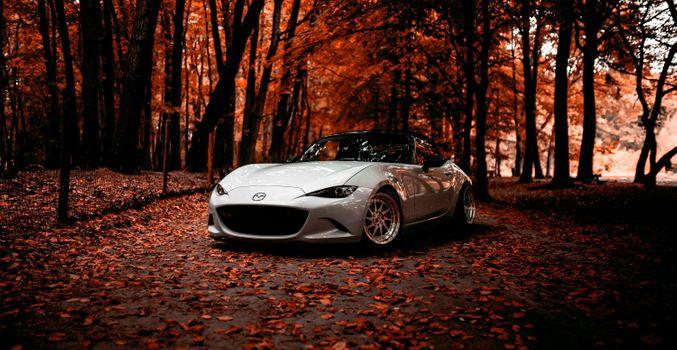 Фото бесплатно Mazda, MX5, осенний парк