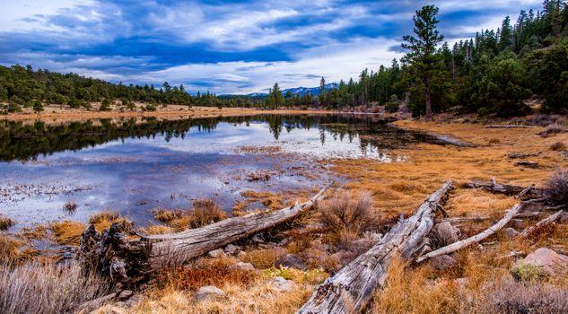 Фото бесплатно Сьерра Невада, озеро Тахо, природа