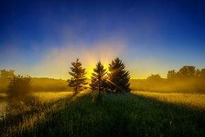 Фото бесплатно пейзаж, поле, силуэты