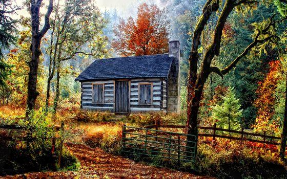 Фото бесплатно заброшенный домик, осень, лес