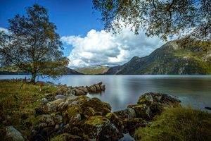 Photo free mountain lake and trees, late summer, landscape