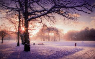Фото бесплатно рассвет, зима, туман, парк, снег, деревья, лавочка, пейзаж