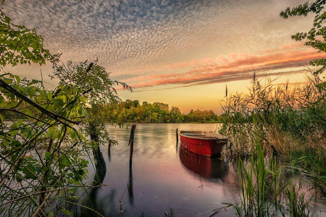 Фото бесплатно Йоркшир, Канада, небо, закат, озеро, лодка, деревья - на рабочий стол