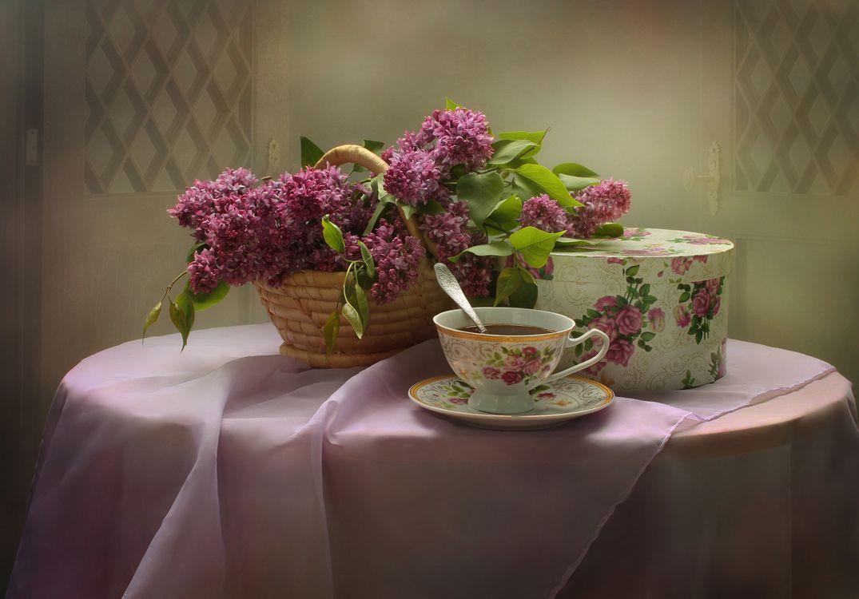 Фото бесплатно букет сирени, сирень, цветы, флора, натюрморт, цветы