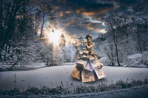 Бесплатные фото зима,лес,озеро,деревья,манекен,закат солнца,art