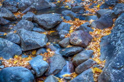 Rocks and autumn leaves · free photo