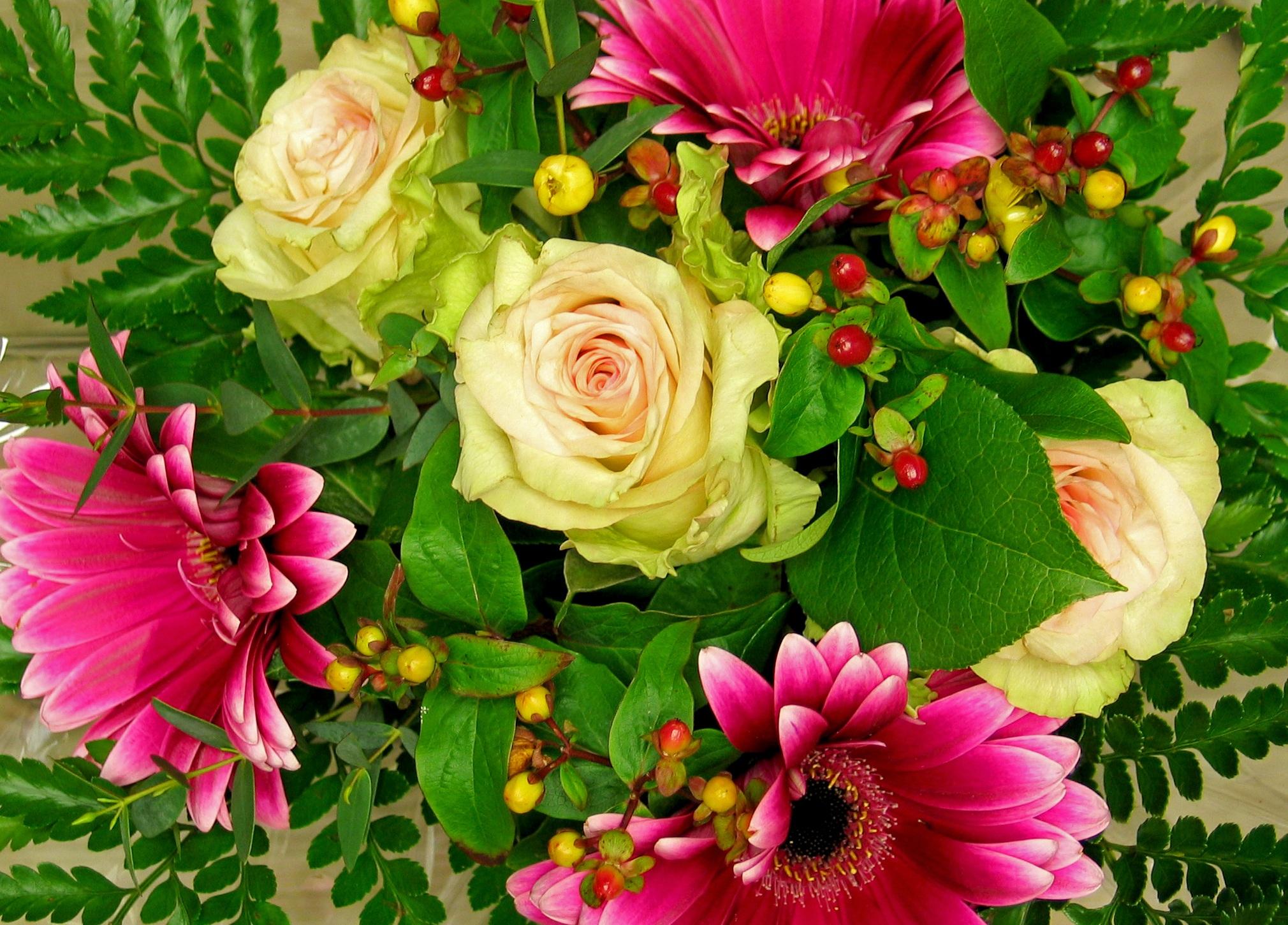 Открытка мир цветов