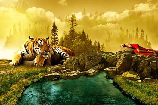 Бесплатные фото тигр,кошка,хищник,животные,опасный,природа,млекопитающее,кошачий,живая природа,дикая кошка,цифровая манипуляция,фото искусство