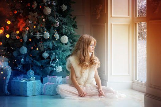 Photo free winter, room, holiday