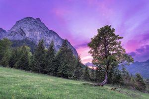 Бесплатные фото закат,горы,поле,холм,деревья,небо,дерево