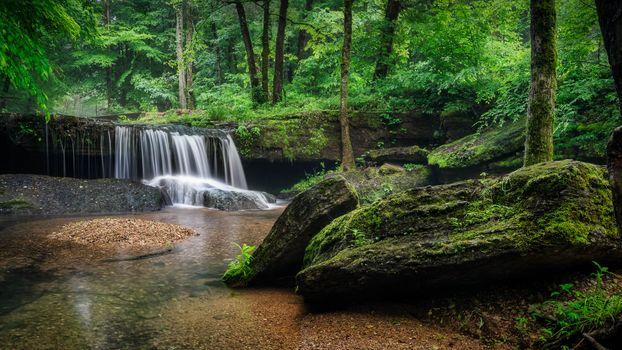 Заставки Теннесси, лес, водопад