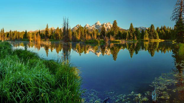Фото бесплатно ели, Национальный парк Гранд-Титон, озеро