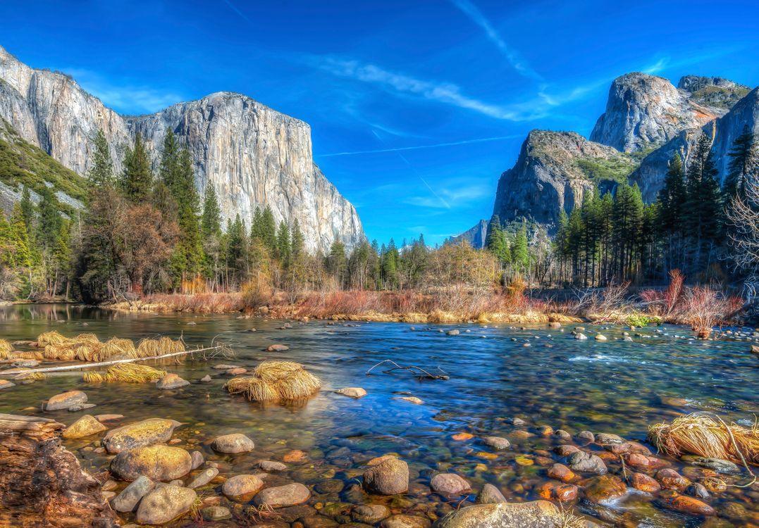 Photos for free mountains, Yosemite national Park, trees - to the desktop