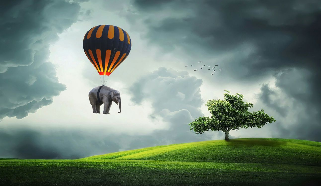 Фото бесплатно Слон, воздушный шар, летать, дерево, поле, Кукурузное поле, природа, пейзаж, небо, Цены расширенных лицензий, Зеленый, Полеты на воздушном шаре, Пастбище, атмосфера, облако, рендеринг