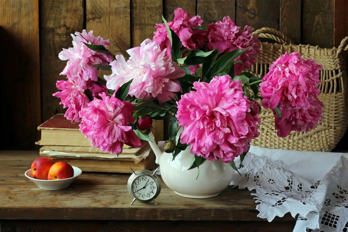 Фото бесплатно цветы, пионы, натюрморт - на рабочий стол