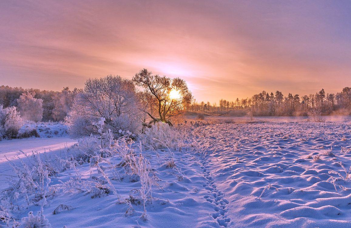 Зимний сказочный пейзаж · бесплатное фото