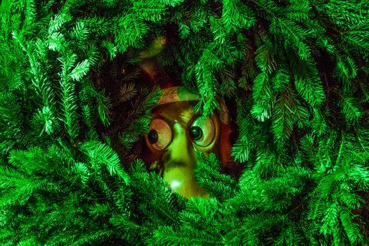 Фото бесплатно новогодняя ёлка, иголки, ветки