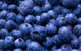 Фото бесплатно ягоды, черника, капли