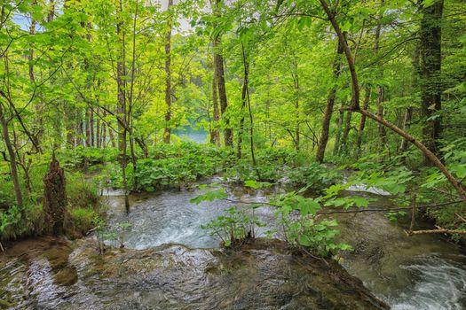 Вода текущая в реку · бесплатное фото