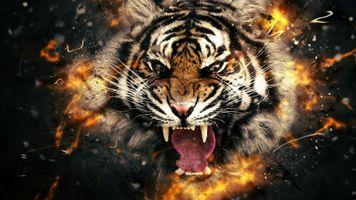 Бесплатные фото тигр,хищник,оскал,клыки,art