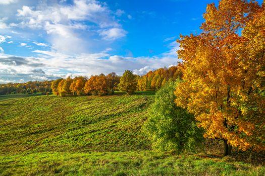 Фото бесплатно осень в москве, осенние листья, усадьба