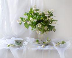Photo free vase, flower, background