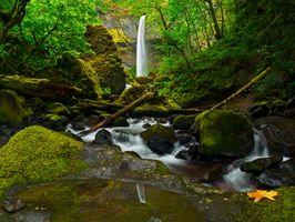 Бесплатные фото водопад,лес,деревья,водоём,речка,камни,природа