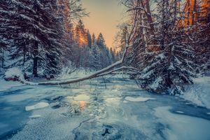 Фото бесплатно Живец, Бескиды, Польша