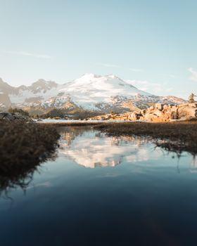 Фото бесплатно естественный, снег, лес
