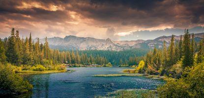 Бесплатные фото пейзаж,дерево,природа,лес,горы,гора,облако